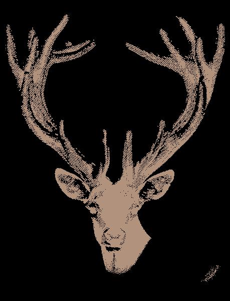 Grabado de ciervo Finca Lagunes